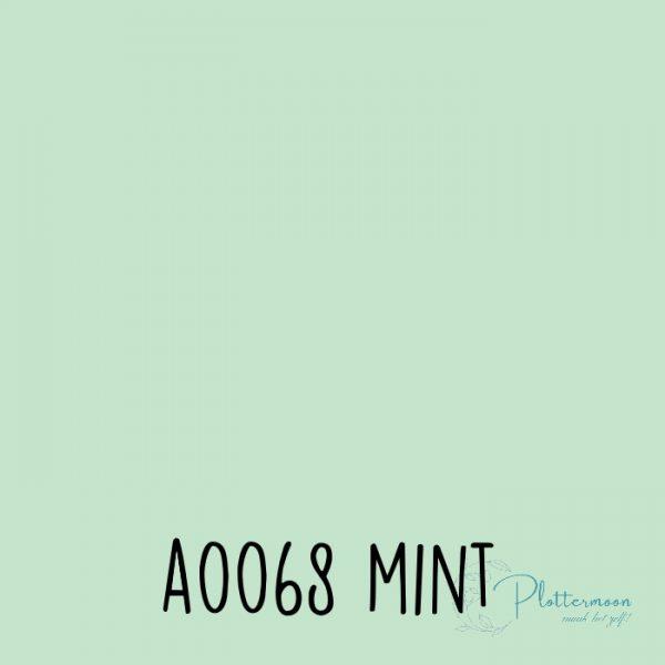 Siser effen flex A0068 Mint